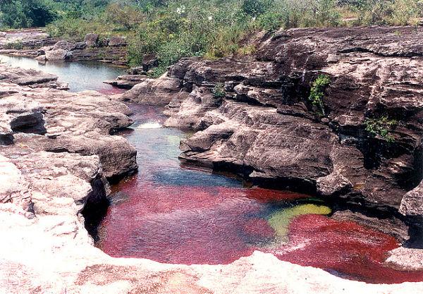 Un rio de cinco colores