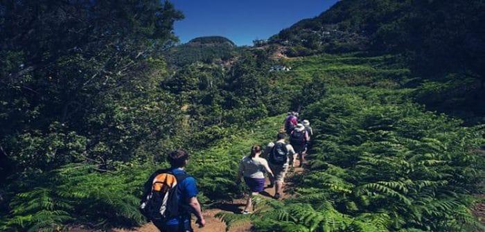 """Parte del recorrido que se realiza en el """"Las Palmas Walking Festival"""""""
