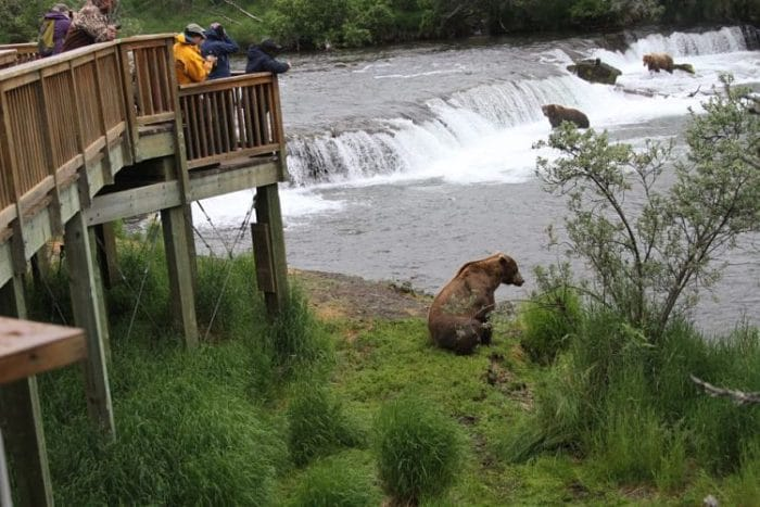 Ecoturismo en Alaska