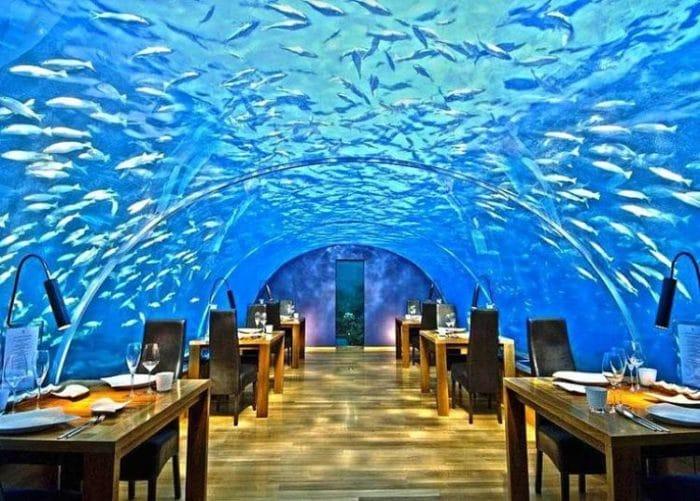 Imponente arco transparente con vista al océano del Restaurante Ithaa