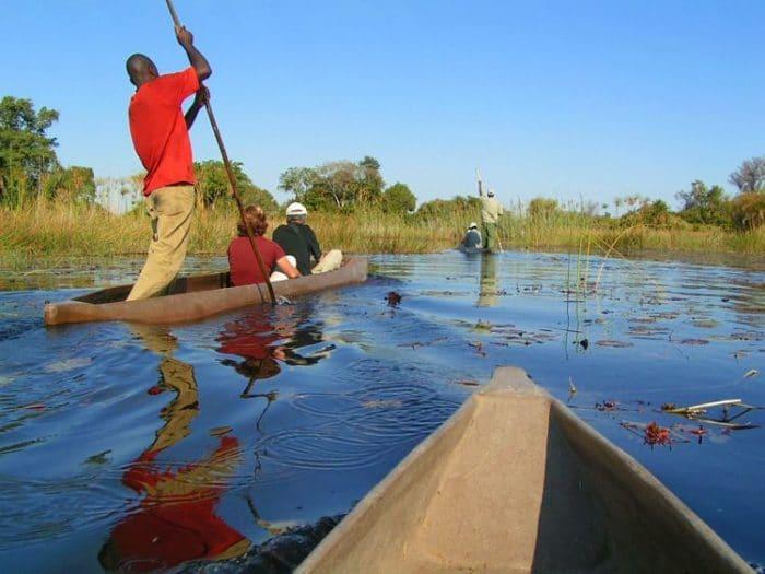 Ecoturismo en el delta de un río en Botswana