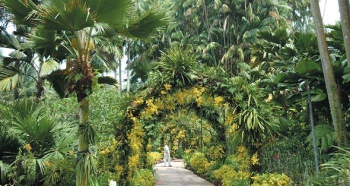 Parque Nacional Las Orquídeas