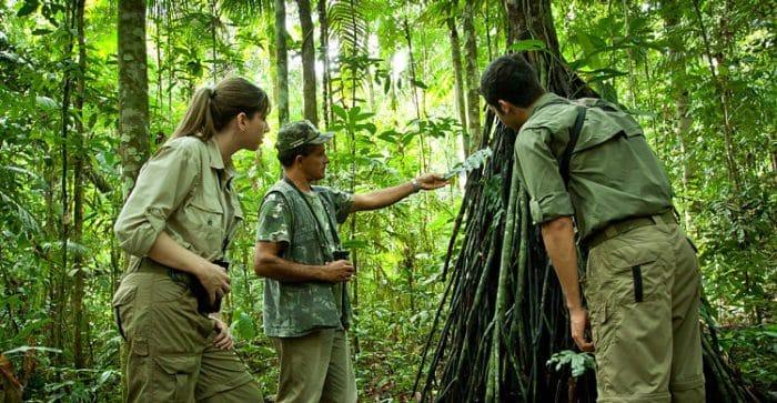 Se ofrecen charlas acerca de las especies en los senderos del Amazonas