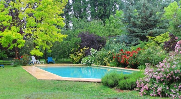 Piscina en medio de la naturaleza en Casa Glebinias