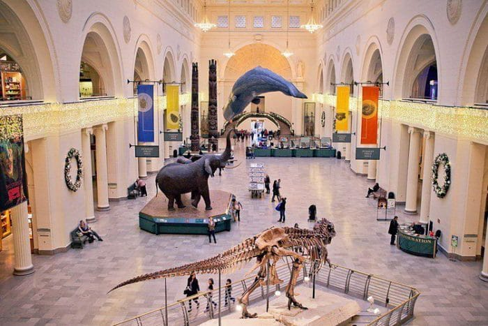 Chicago-Museo de Historia Natural Field