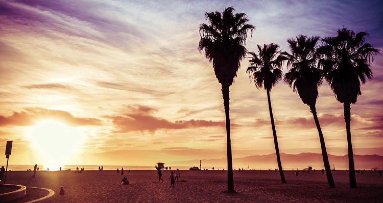 Venice Beach. California
