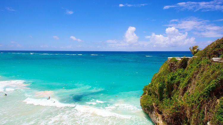Playa Crane