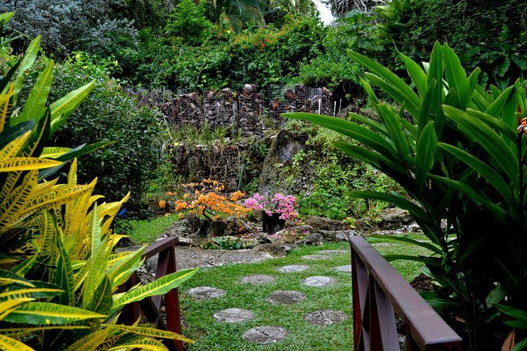 Jardines Botánicos Andrómeda