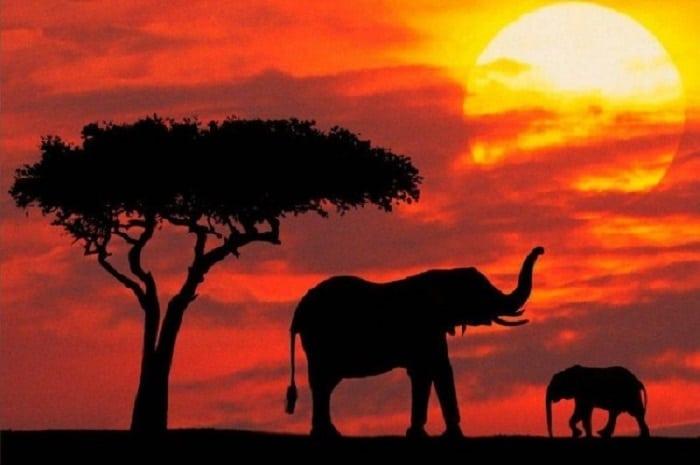 conoce las atracciones turísticas de Sudáfrica