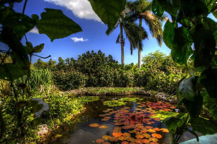 Queen Elizabeth II Botanic Park