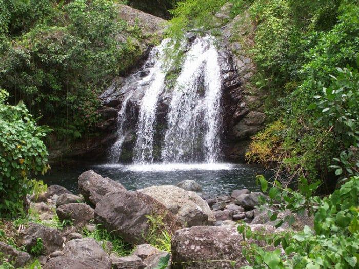 Parque Nacional Montañas Azules y Montañas Jhon Crow