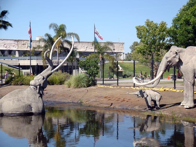 La Brea Tar Pits y Museo Page