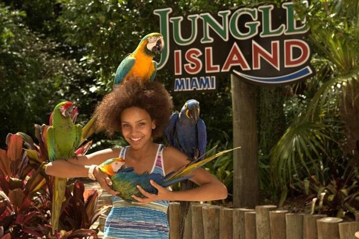 las atracciones turísticas de Miami