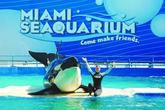 atracciones turísticas de Miami