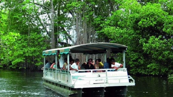 disfruta de las atracciones turísticas en Jamaica