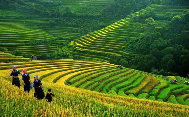 que-ver-en-Vietnam-7