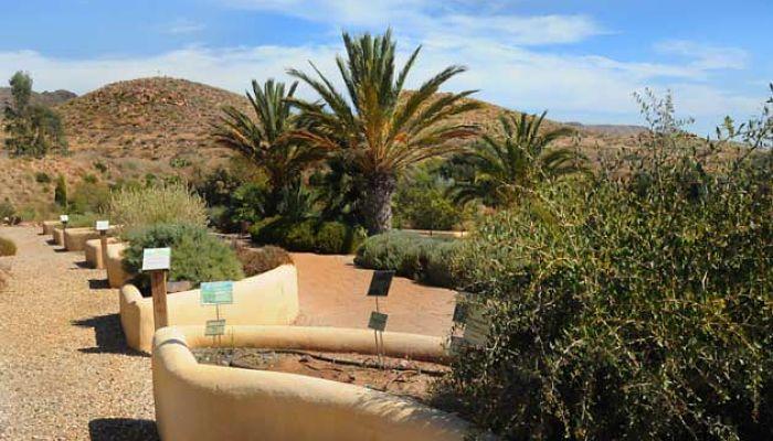 Costa de almer a un lugar encantador para unas vacaciones for Jardin botanico almeria