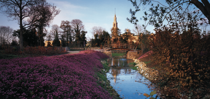 Que ver en gij n te damos 10 razones para visitar esta ciudad for Jardin botanico en sevilla
